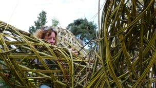 The Cwtch by South and West Wales Wildlife Trust