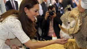Duchess of Cambridge pats a ram