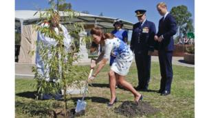 During the visit to the air base, Catherine, the Duchess of Cambridge plants a eucalyptus tree in the Memorial Garden in remembrance of service men and women who have died.