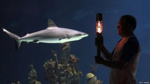 Pat Revell with the Queen's Baton in front of the main tank at The Deep Aquarium on 11 June 2014 in Hull