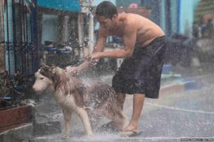 A man takes advantage of the heavy rain to give his Siberian husky a bath outside their house in Paranaque city, Manila