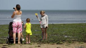 People stand on a beach covered in green algae in Grandcamp-Maisy, north-western France
