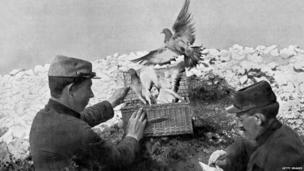 2 soldiers releasing carrier pigeons on front line during world war one