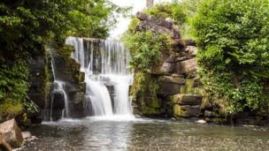 Penllergare Valley Woods upper falls