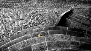 Leaf on steps