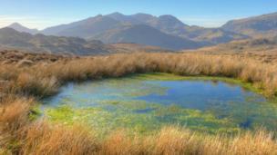 A view of the Snowdon range from Ysgafell Wen taken by Pete Whitehead of Y Felinheli. Gwynedd