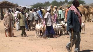 Abanyagihugu kw'isoko ry'ibitungwa muri Somaliland