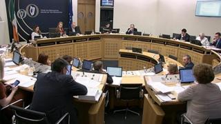 Oireachtas committee
