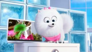 Sky advertisement with fluffy dog
