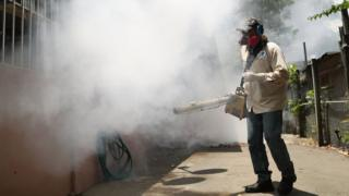 Carlos Varas, a Miami-Dade County mosquito control inspector, uses a Golden Eagle blower to spray pesticide to kill mosquitoes in the Wynwood neighbourhood as the county fights to control the Zika virus outbreak