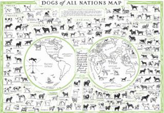 Mapa de los perros de todas las naciones del mundo