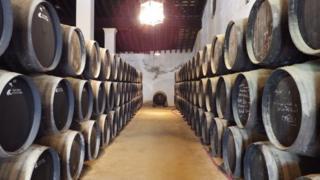Casks of sherry at Gonzalez-Byass