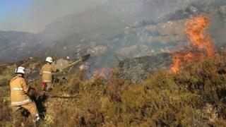 Firefighters tackle grass fire