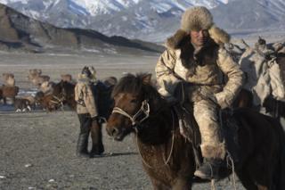 Шоханверхом на лошади