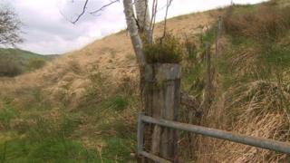 Cefn Coch mountainside