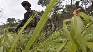 Militares durante una operación para destruir un laboratorio de cocaína en Guaviare, en agosto de 2016.