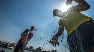 Egyptian fishermen pull their fishing net out of the Nile river in Cairo on July 21, 2017.