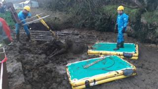 Cow rescue from slurry pit