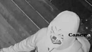 Clown mask burglar