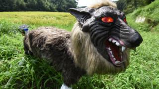 Super Monster Wolf