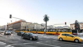 Художница Иоанна Райковска установила в центре Варшавы искусственную пальму - и что вы думаете? Эта инсталляция стала одним из символов столицы