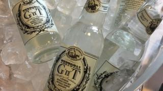 Non-alcoholic gin and tonic