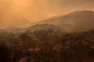 Devastated landscape