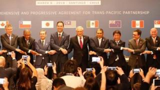 CPTPP, Hiệp định Đối tác Toàn diện và Tiến bộ xuyên Thái Bình Dương, Việt Nam, Hoa Kỳ