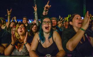 People enjoying an act at the Download Festival