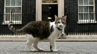 Larry outside Number 10