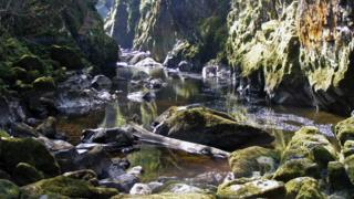 Fairy Glen Gorge