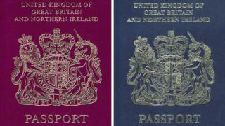 mo4ch:>Lords seek rethink on UK passport contract
