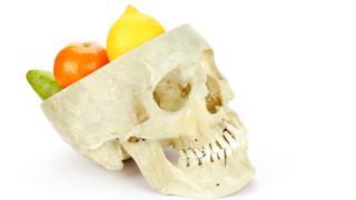 Фруктоая диета, по мнению ученых, помогает развить большой мозг