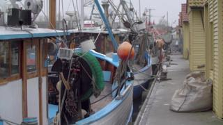 Fishing boats in the harbour at Freest on Germany's Baltic coast