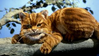Cheshire cat (with huge grin)