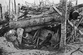 A German cannon buried under uprooted trees in Louage Wood during the offensive on the Somme, World War I, 10th October 1916
