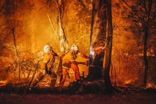 Two volunteer firefighters cut down a tree with a chainsaw as flames burn around them