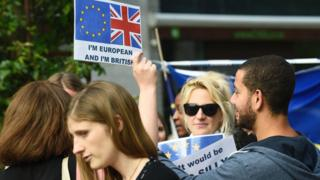 British expats demonstrating in Brussels, 28 Jun 16