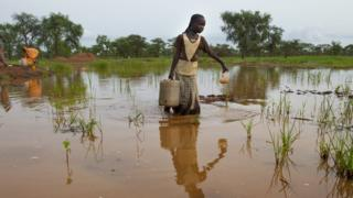 Woman collecting water from muddy pond
