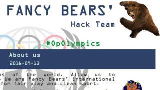 Fancy Bears website