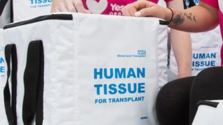 Human tissue transplant bag