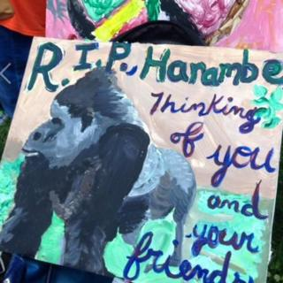 Painting of gorilla. Picture reads 'Justice for Harambe'