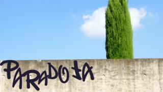 Árbol tras muro y graffiti que dice paradoja
