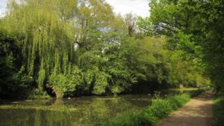 Basingstoke Canal near Woodham