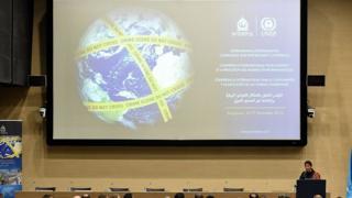 презентация на ассамблее Интерпола