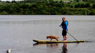 Man and dog paddle boarding