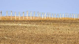 سياج أمني بين المناطق التي تسيطر عليها المغرب وتلك التي تسيطر عليها بوليساريو من الصحراء الغربية.