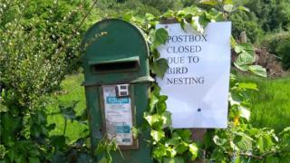An Irish post-box