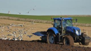Field being ploughed in Balmullo