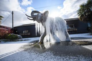 Icicles hang from a frozen elephant fountain in Colchester